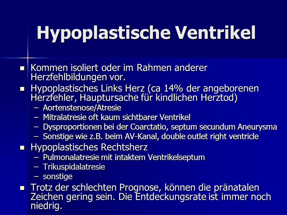 Hypoplastische Ventrikel