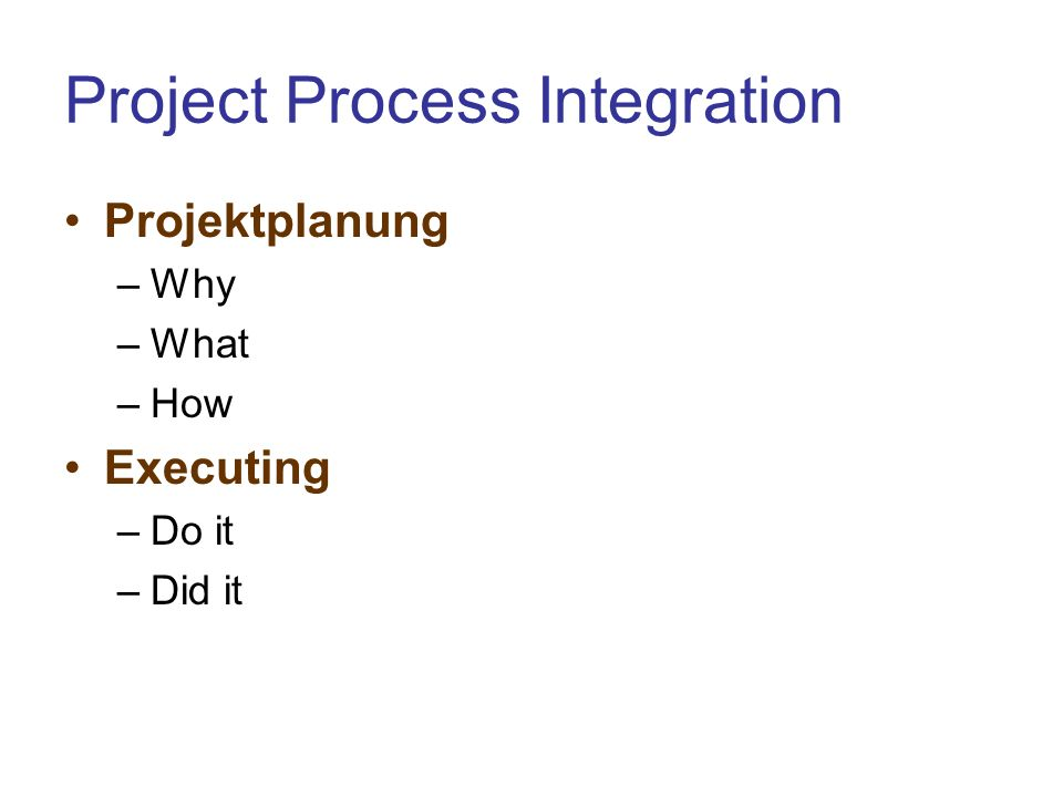 Project Process Integration