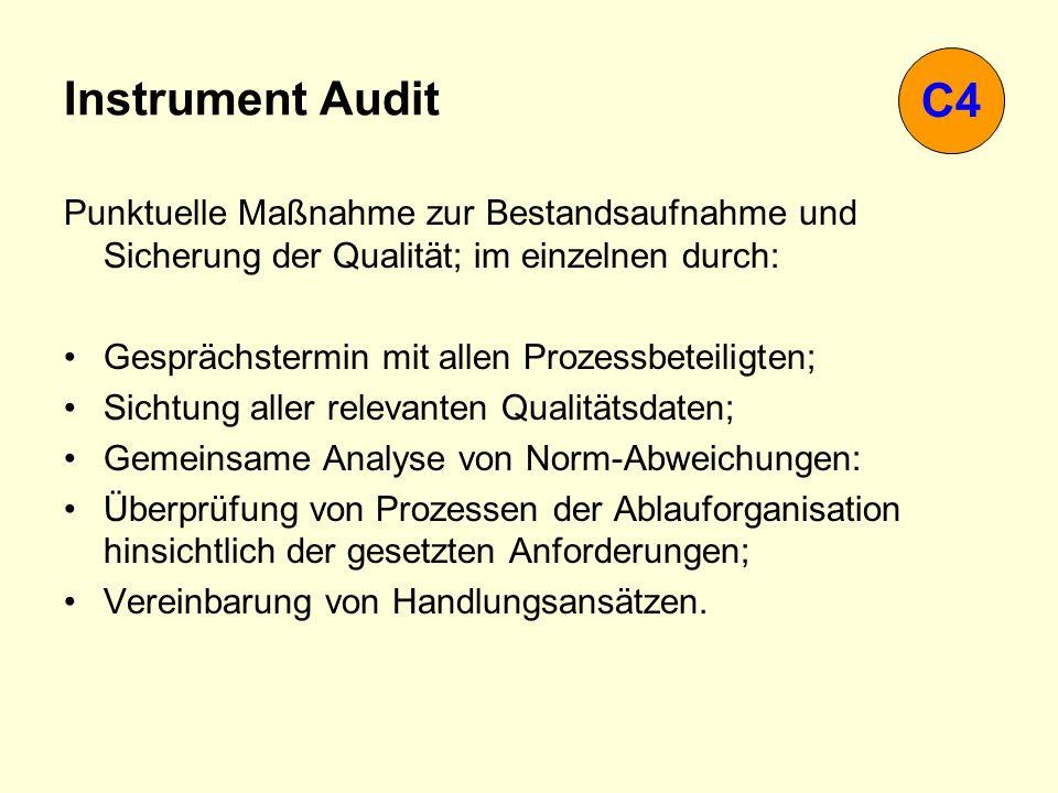 Instrument Audit C4. Punktuelle Maßnahme zur Bestandsaufnahme und Sicherung der Qualität; im einzelnen durch: