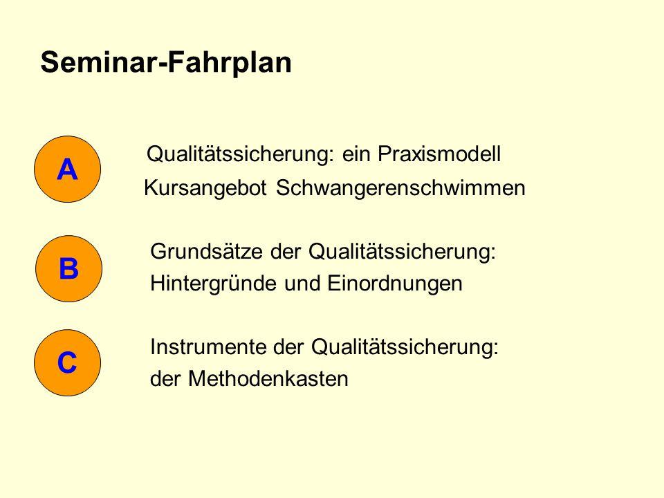Qualitätssicherung: ein Praxismodell A