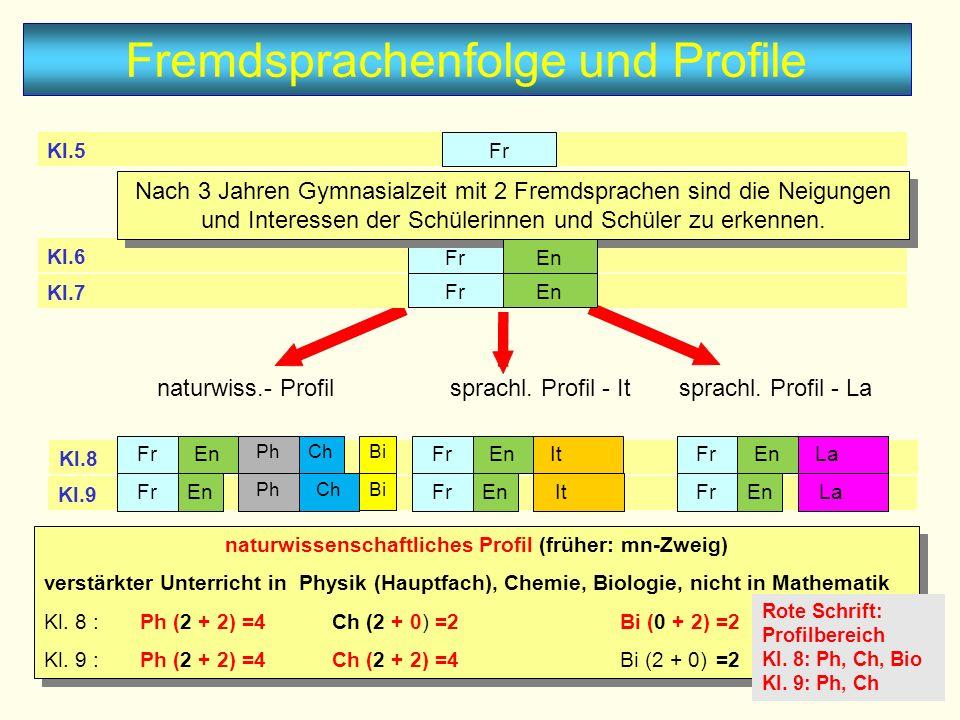 naturwissenschaftliches Profil (früher: mn-Zweig)