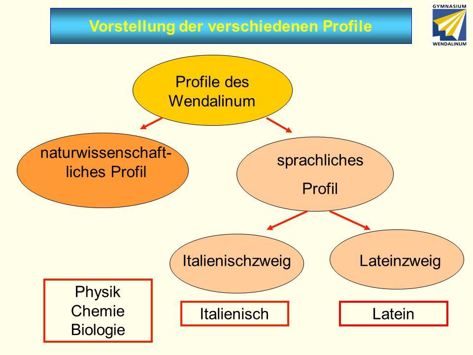 Vorstellung der verschiedenen Profile