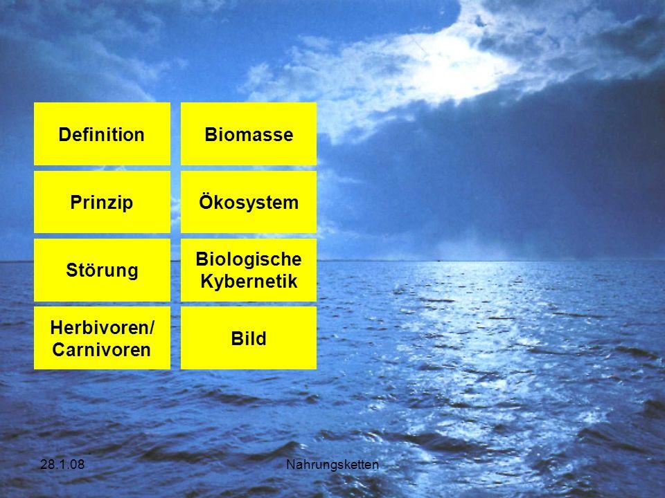 Definition Biomasse Prinzip Ökosystem Störung Biologische Kybernetik