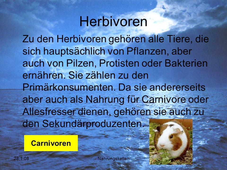 Herbivoren