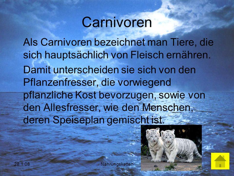 Carnivoren Als Carnivoren bezeichnet man Tiere, die sich hauptsächlich von Fleisch ernähren.
