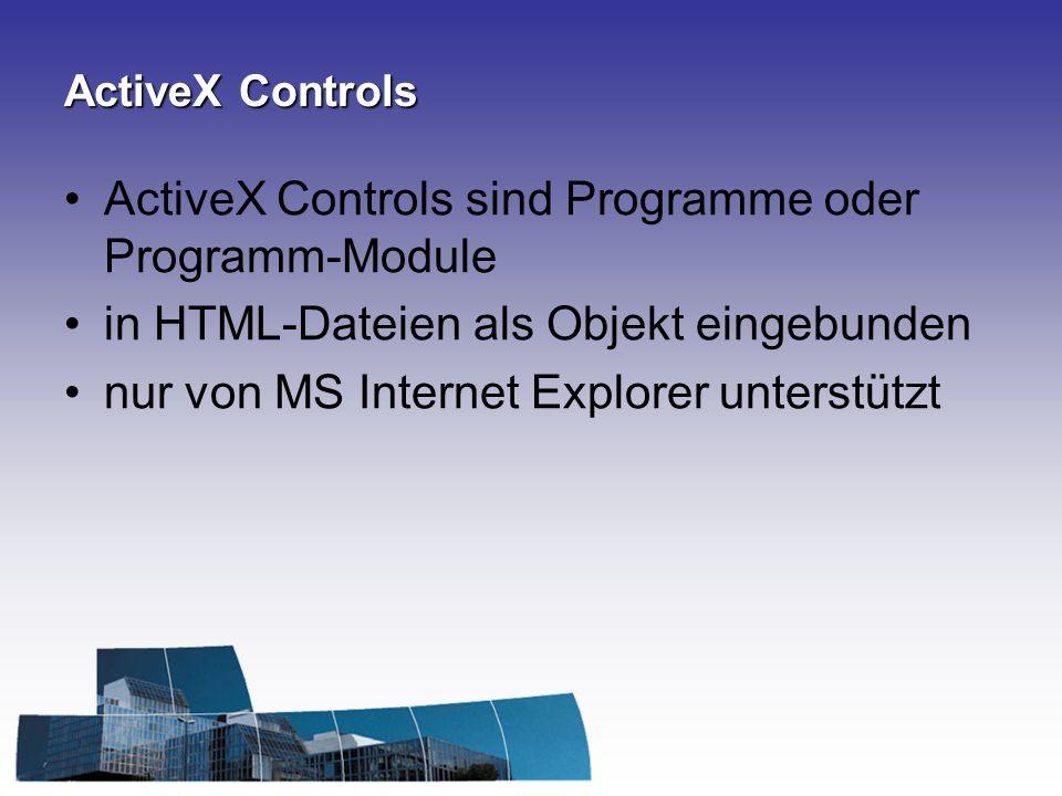 ActiveX Controls sind Programme oder Programm-Module