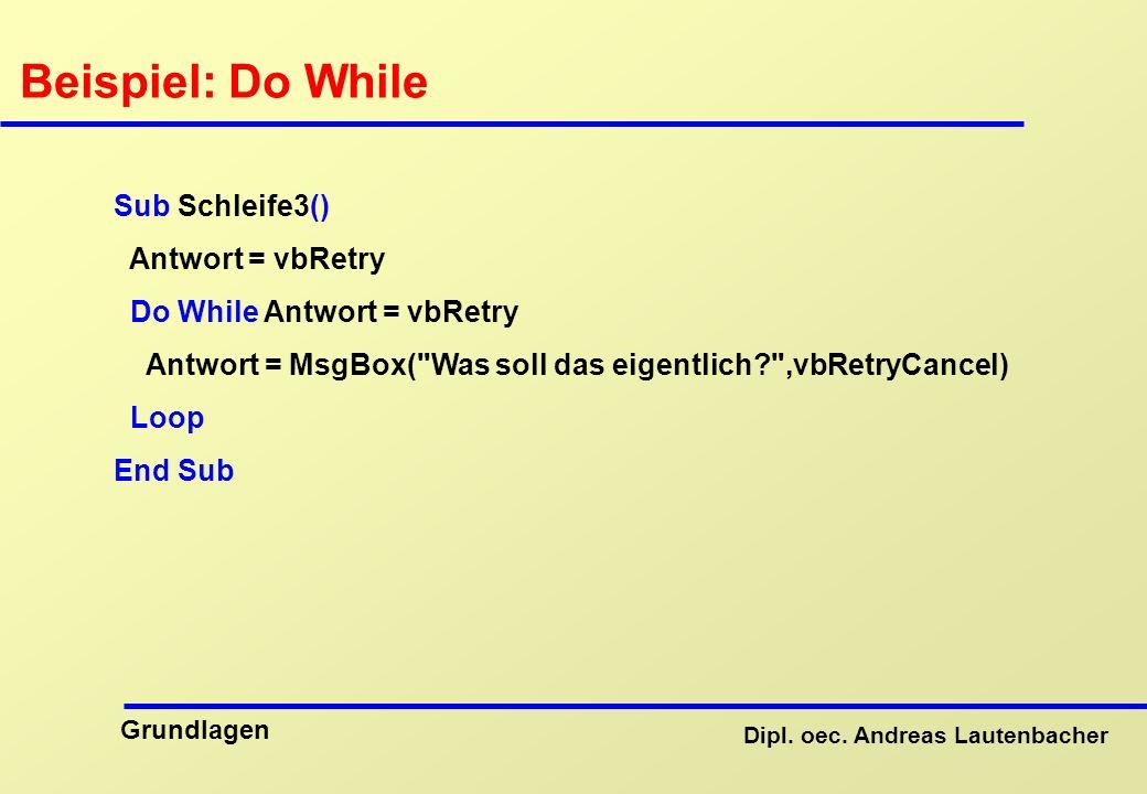 Beispiel: Do While Sub Schleife3() Antwort = vbRetry