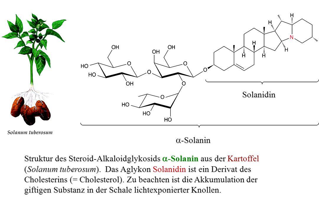 Solanidin a-Solanin. Struktur des Steroid-Alkaloidglykosids a-Solanin aus der Kartoffel.