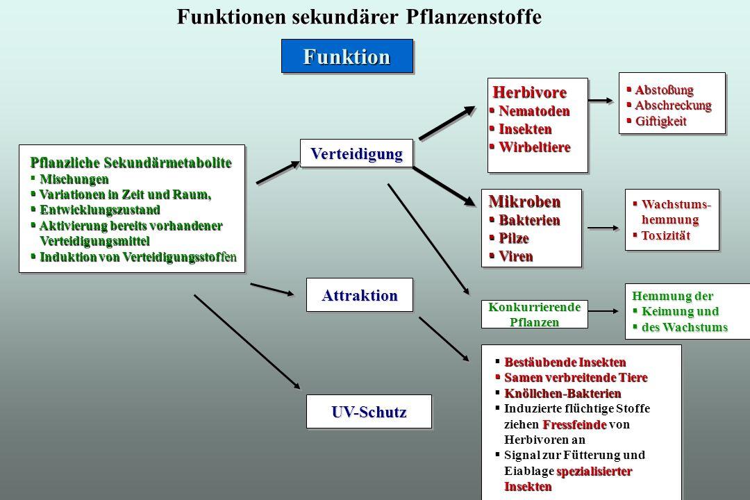 Funktionen sekundärer Pflanzenstoffe