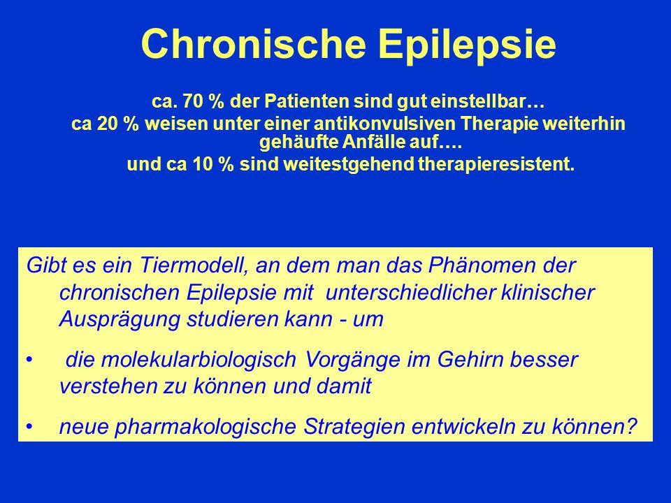 Chronische Epilepsie ca. 70 % der Patienten sind gut einstellbar…