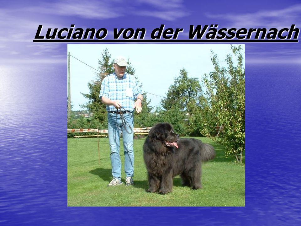 Luciano von der Wässernach