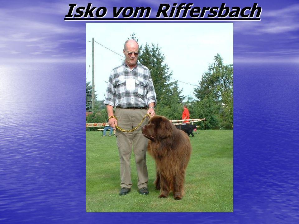 Isko vom Riffersbach