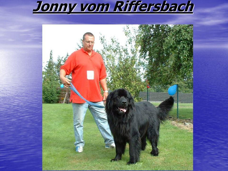 Jonny vom Riffersbach