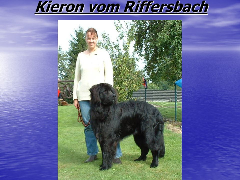 Kieron vom Riffersbach