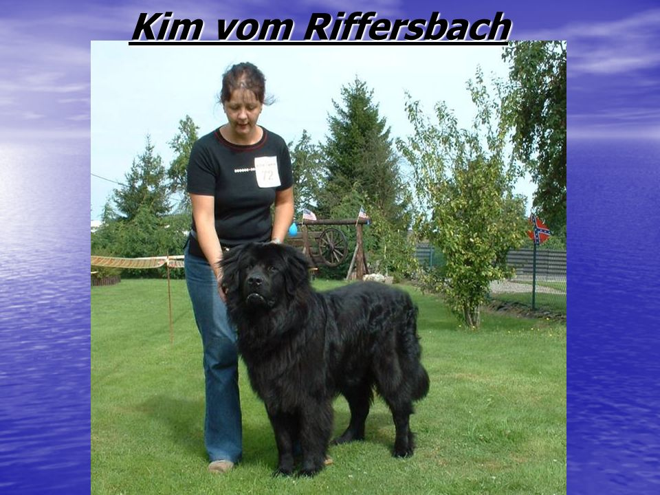 Kim vom Riffersbach