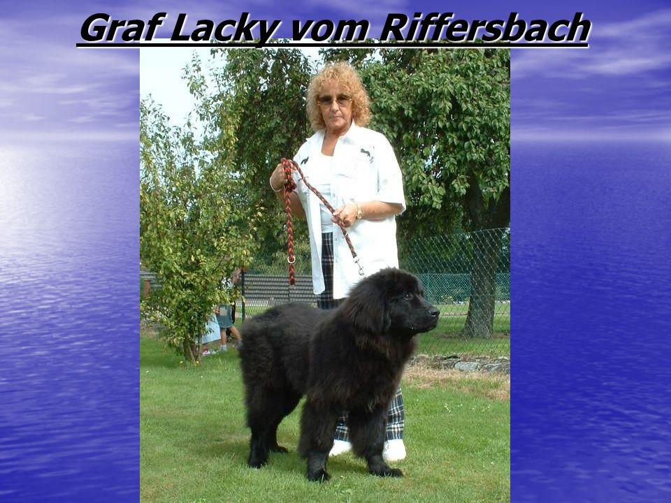 Graf Lacky vom Riffersbach