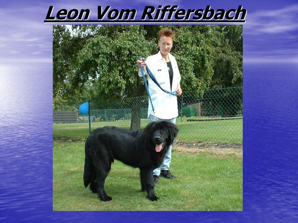 Leon Vom Riffersbach