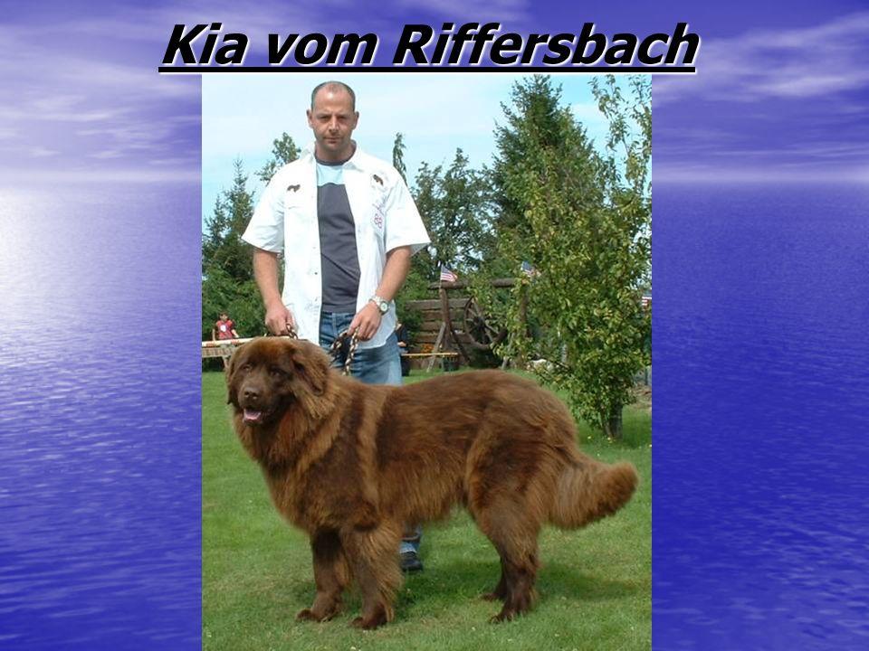 Kia vom Riffersbach