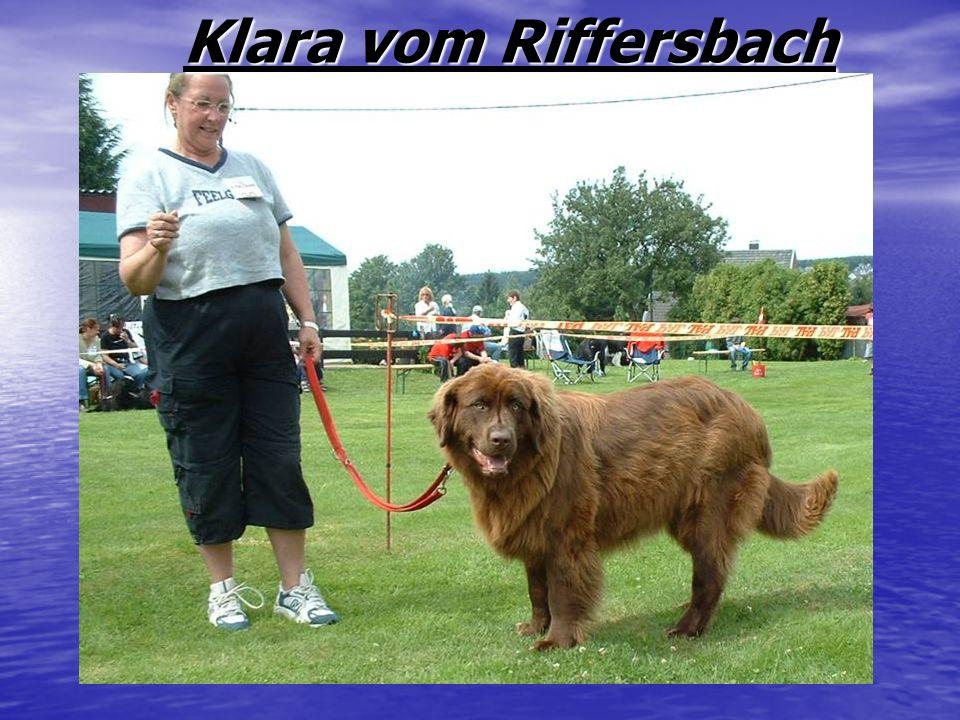 Klara vom Riffersbach