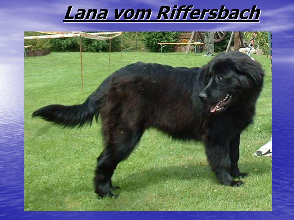 Lana vom Riffersbach
