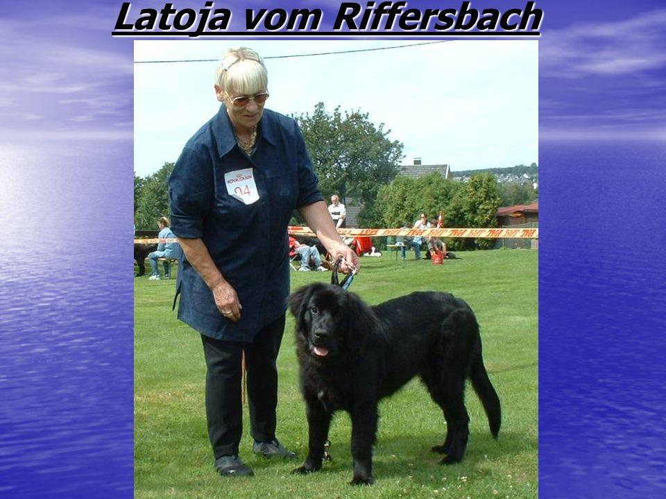 Latoja vom Riffersbach