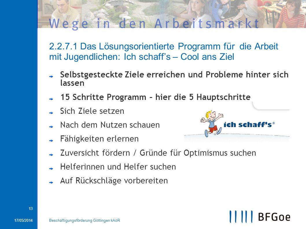 2.2.7.1 Das Lösungsorientierte Programm für die Arbeit mit Jugendlichen: Ich schaff's – Cool ans Ziel