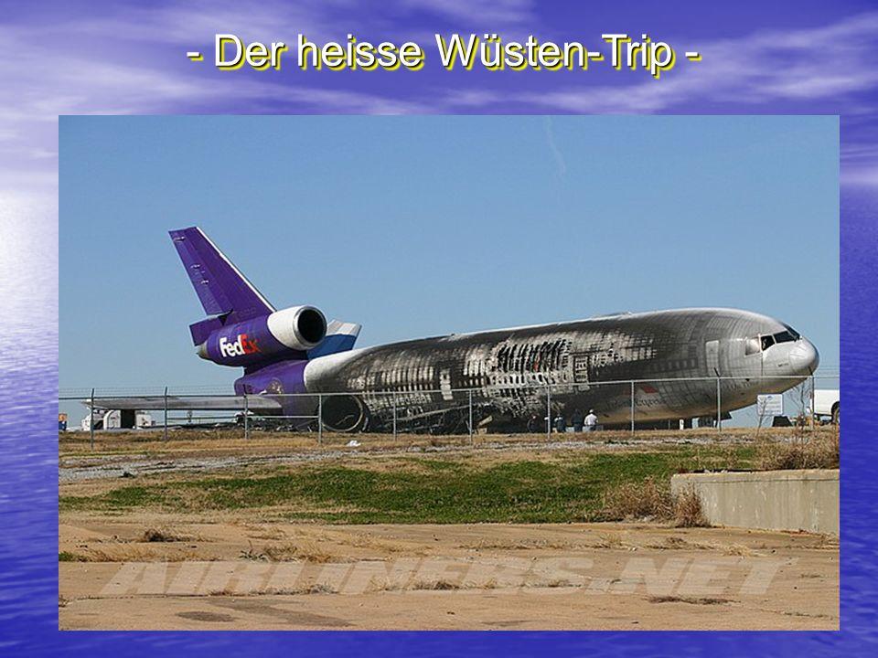 - Der heisse Wüsten-Trip -