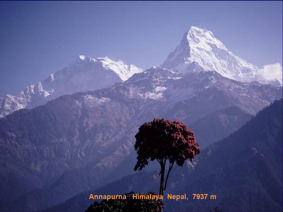 Annapurna Himalaya Nepal, 7937 m