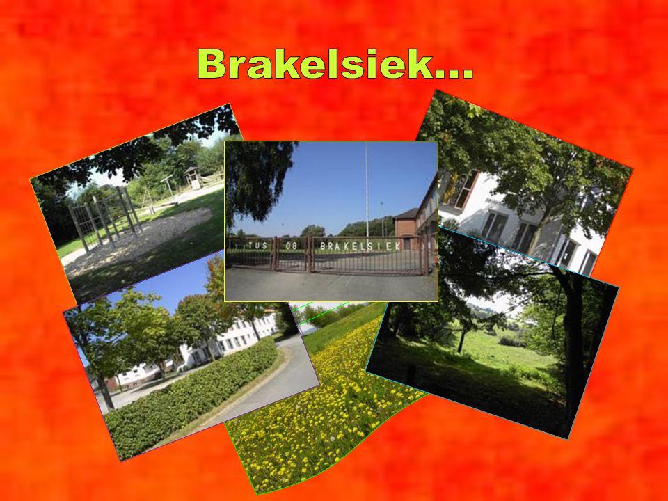 Brakelsiek...