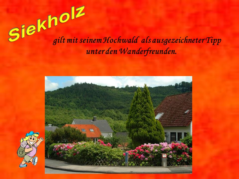Siekholz gilt mit seinem Hochwald als ausgezeichneter Tipp