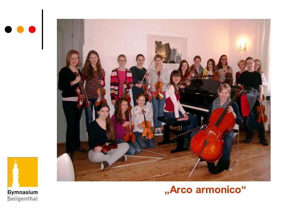 """""""Arco armonico"""