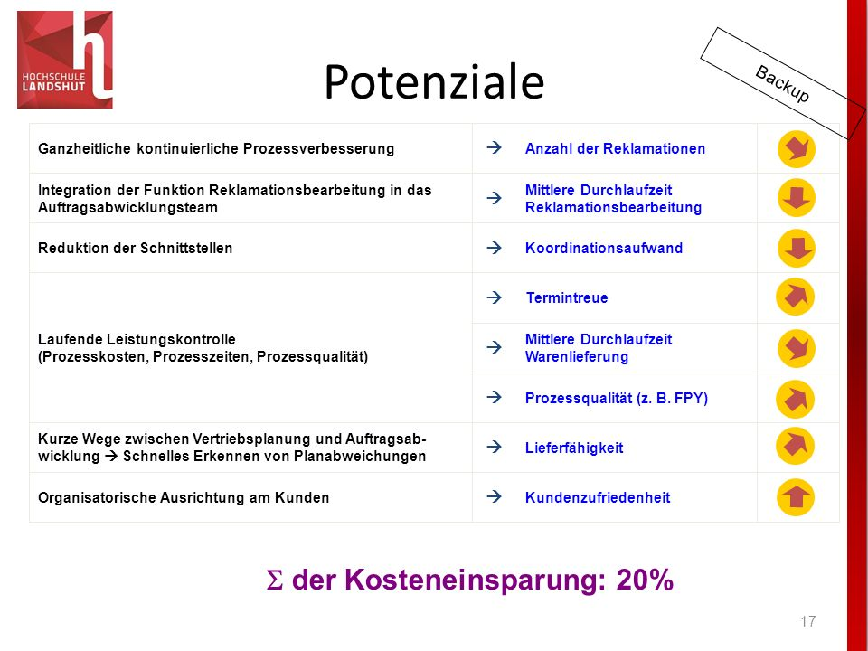 Potenziale S der Kosteneinsparung: 20% Backup        