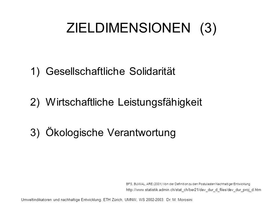 ZIELDIMENSIONEN (3) 1) Gesellschaftliche Solidarität