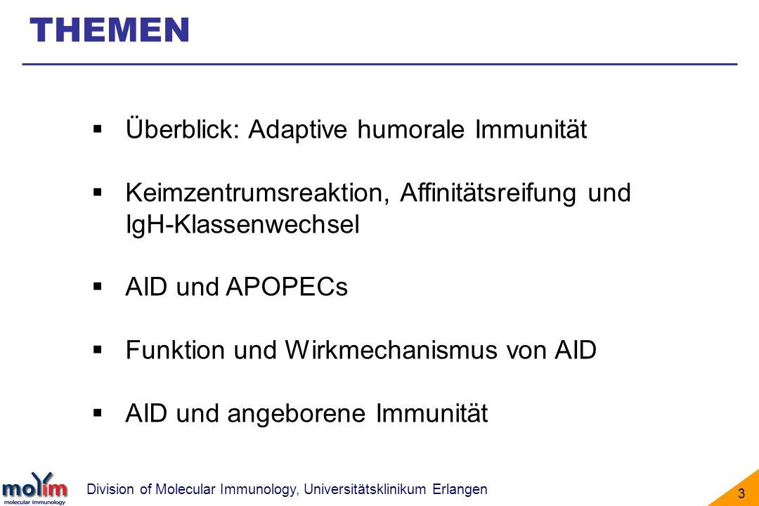 THEMEN Überblick: Adaptive humorale Immunität