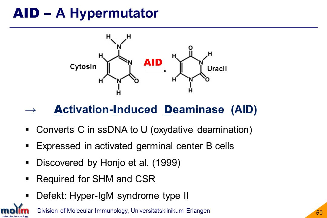 AID – A Hypermutator → Activation-Induced Deaminase (AID) AID