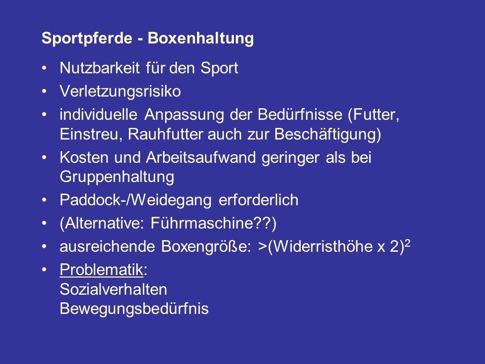 Sportpferde - Boxenhaltung