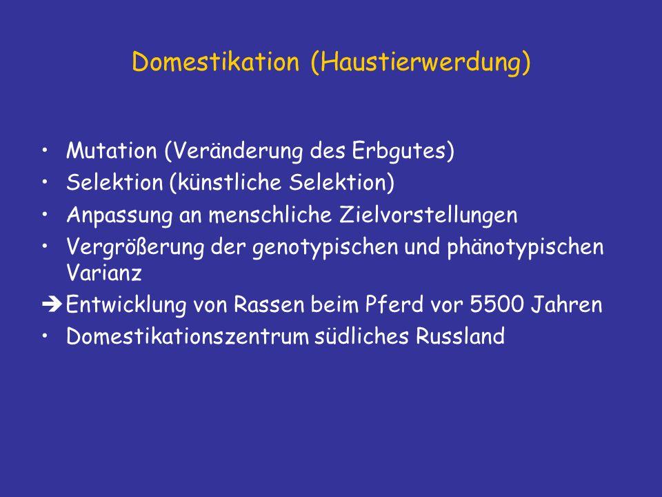 Domestikation (Haustierwerdung)