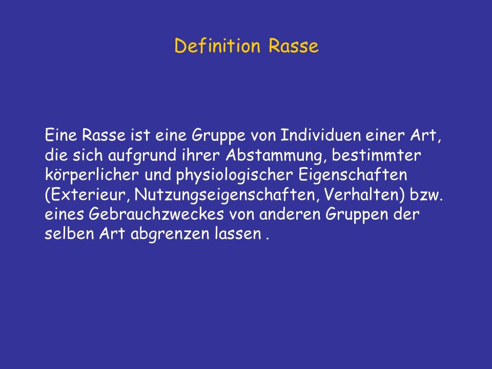 Definition Rasse