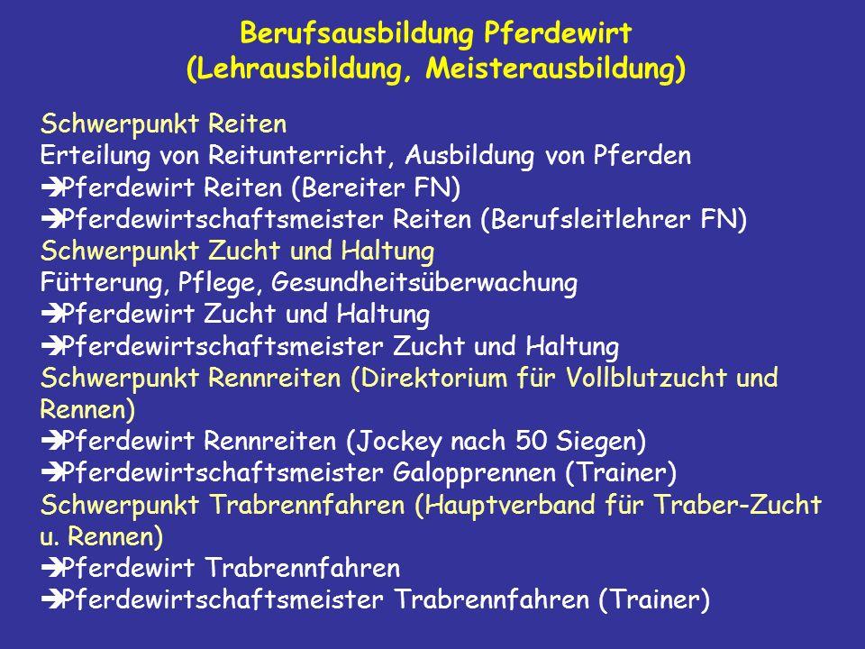Berufsausbildung Pferdewirt (Lehrausbildung, Meisterausbildung)