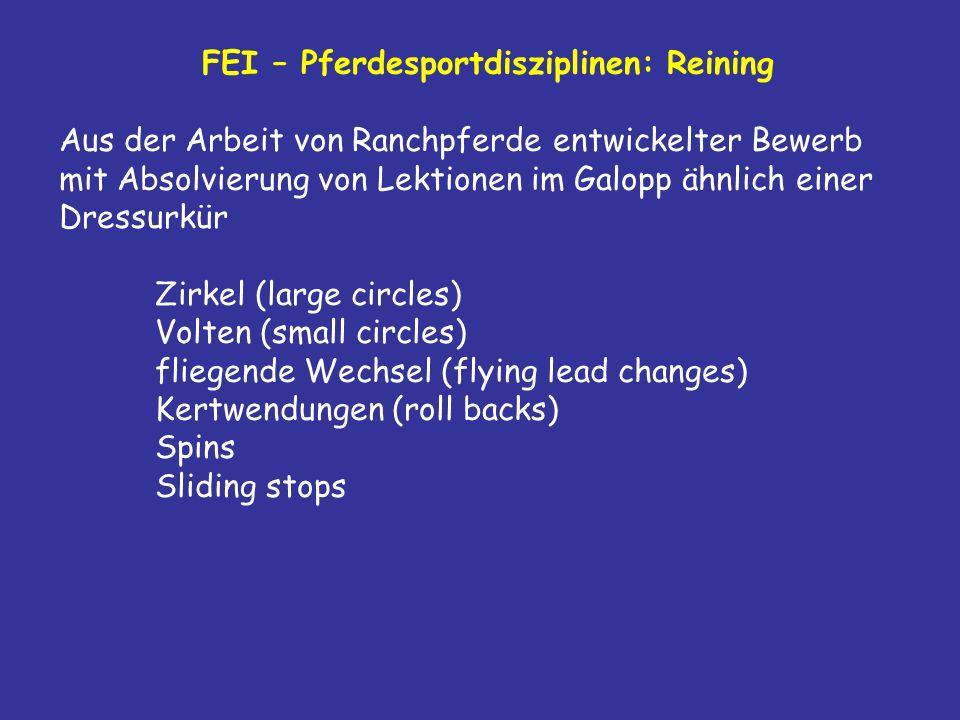 FEI – Pferdesportdisziplinen: Reining