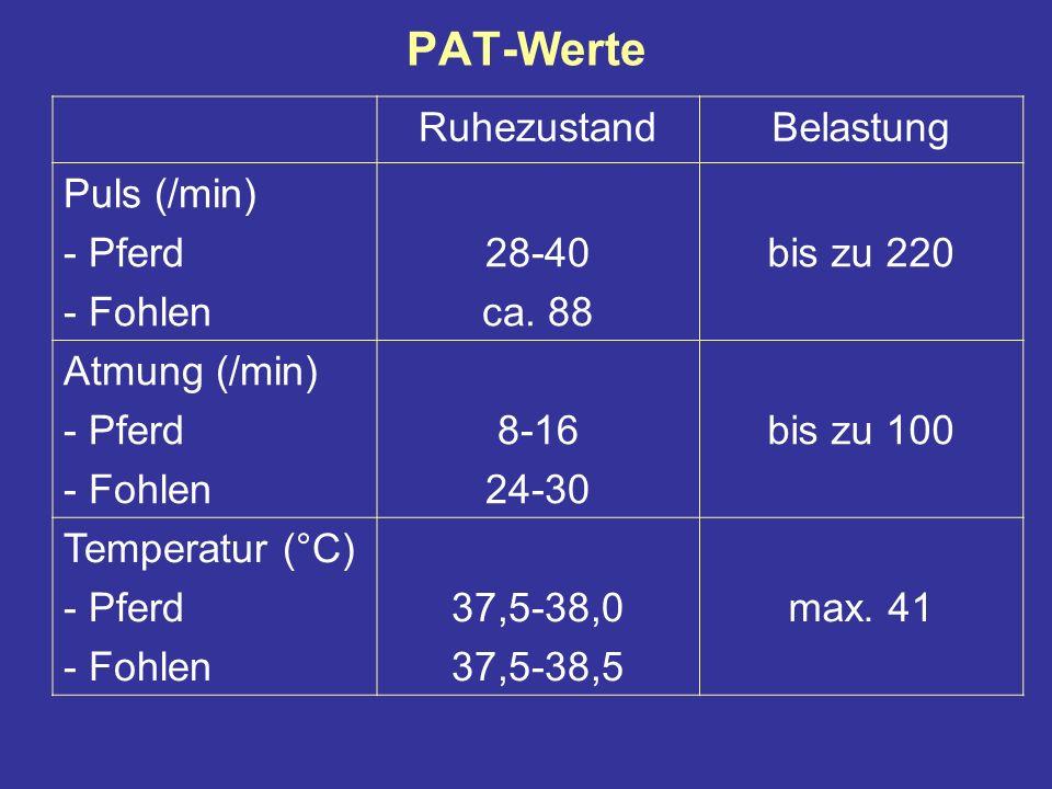 PAT-Werte Ruhezustand Belastung Puls (/min) Pferd Fohlen 28-40 ca. 88