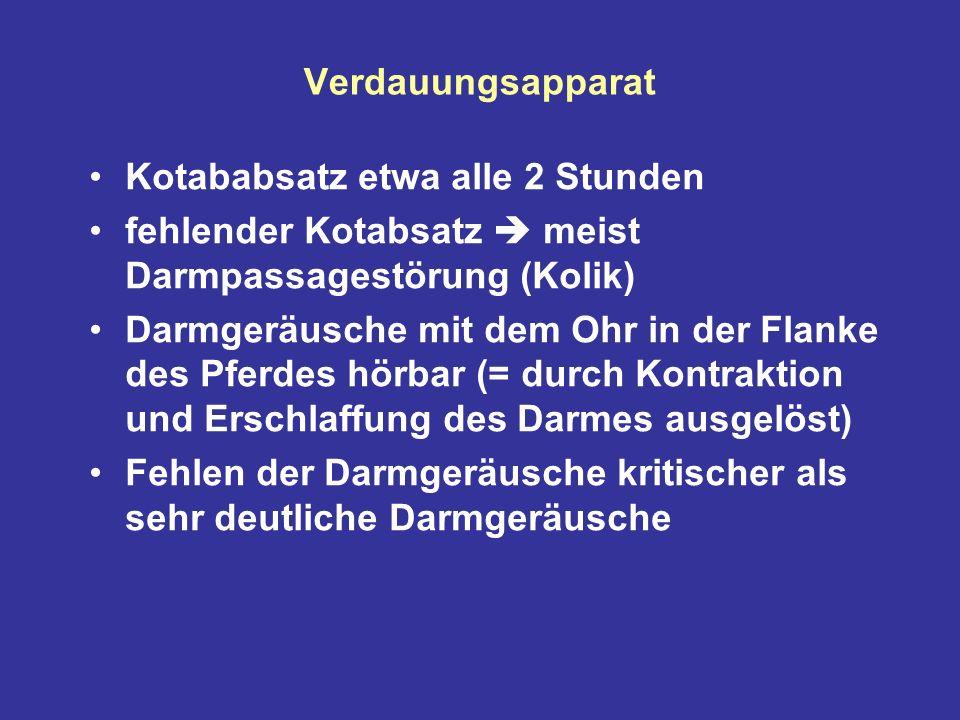 Verdauungsapparat Kotababsatz etwa alle 2 Stunden. fehlender Kotabsatz  meist Darmpassagestörung (Kolik)