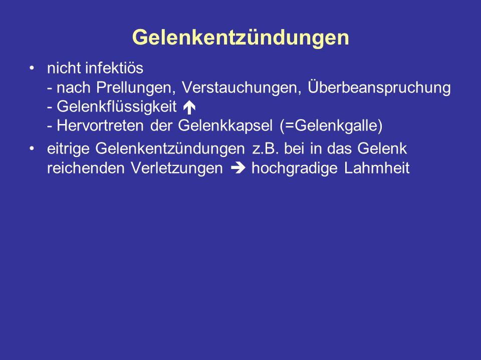 Gelenkentzündungen