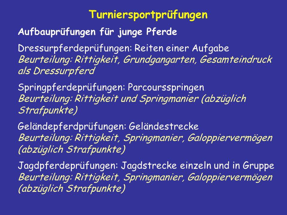 Turniersportprüfungen