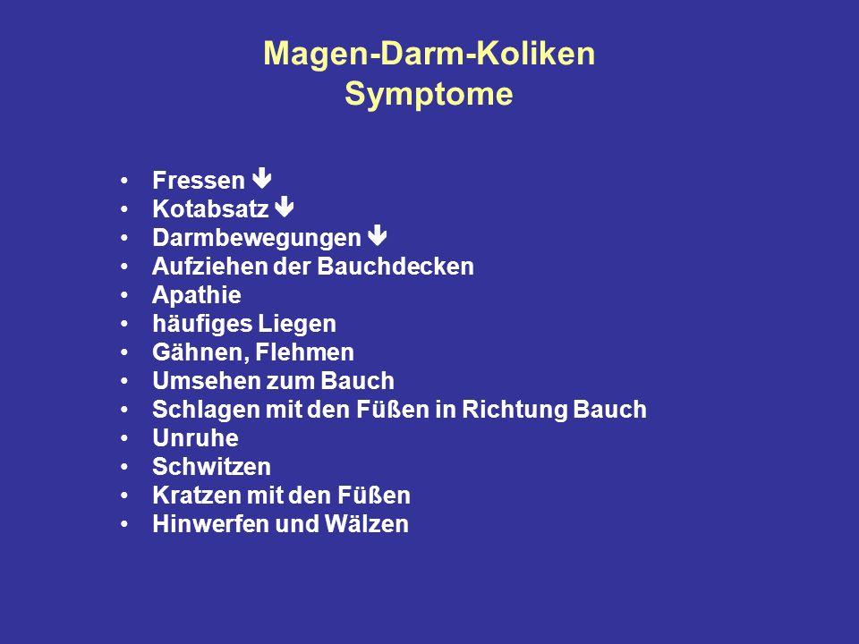 Magen-Darm-Koliken Symptome