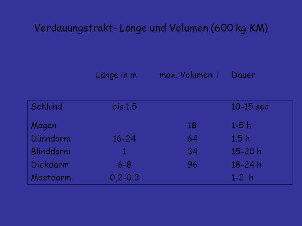 Verdauungstrakt- Länge und Volumen (600 kg KM)
