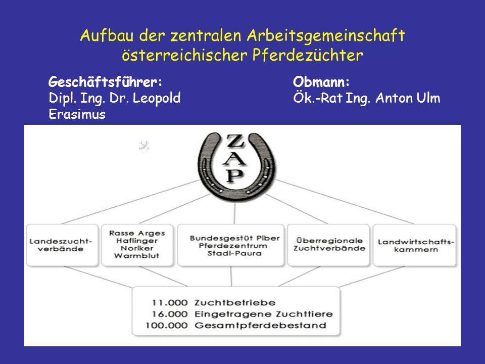 Aufbau der zentralen Arbeitsgemeinschaft österreichischer Pferdezüchter
