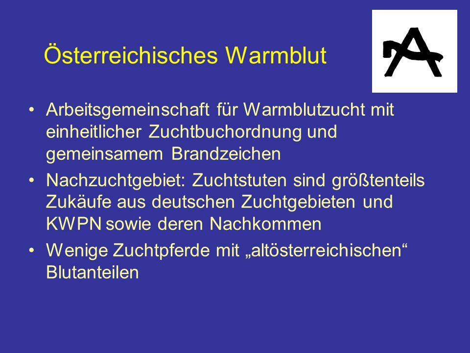 Österreichisches Warmblut