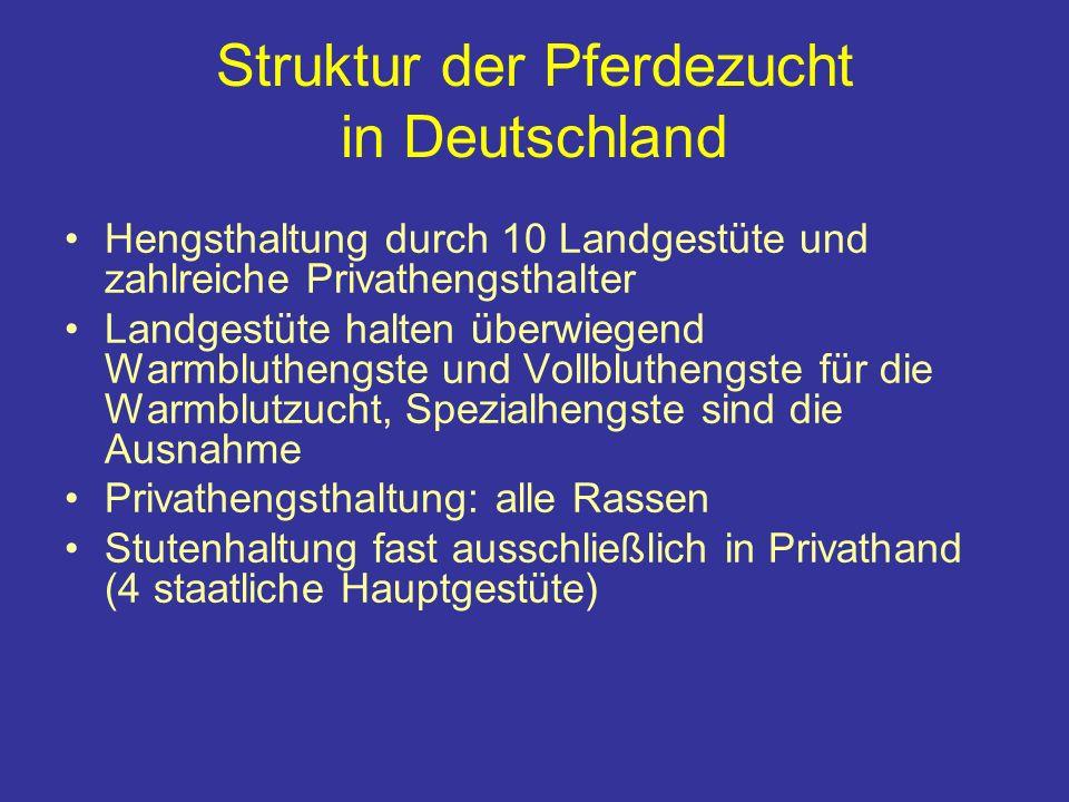 Struktur der Pferdezucht in Deutschland