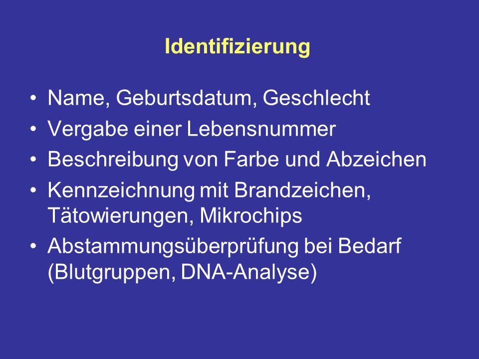 Identifizierung Name, Geburtsdatum, Geschlecht. Vergabe einer Lebensnummer. Beschreibung von Farbe und Abzeichen.